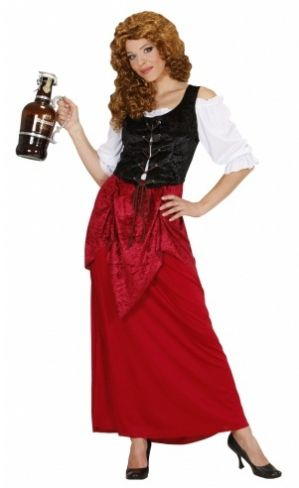 Medieval Tavern Wench Plus Size Costume
